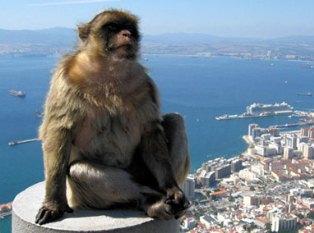 Гибралтар – скала раздора в ЕС