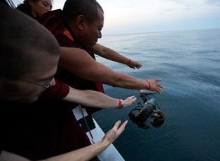 Монахи спасли лобстеров