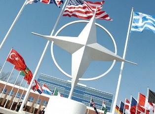 Референдум по НАТО реален?